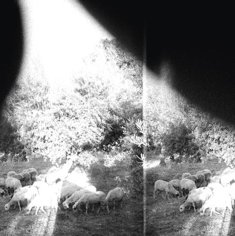 Godspeed You! Black Emperor - Asunder, Sweet and Other Distress