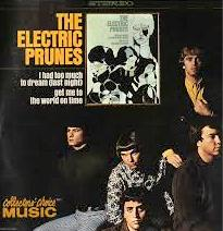 Electric Prunes Too Much To Dream LP