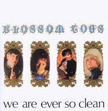 Blossom Toes We Are Ever So Clean cover